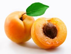 Beurre de noyaux d'abricots