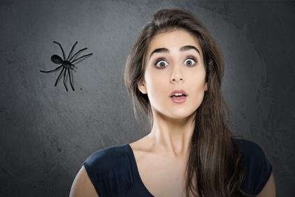 r pulsif naturel pour les araign es. Black Bedroom Furniture Sets. Home Design Ideas